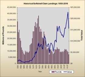 Softshell Clam Landings 1950-2016