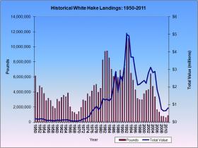 White Hake Landings 1950-2011