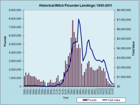 Witch Flounder Landings 1950-2011
