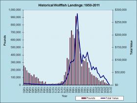 Wolffish Landings 1950-2011
