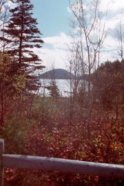 Roadside Scene in Acadia National Park (2001)