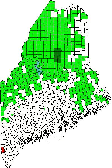 Acton Maine An Encyclopedia