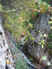 Dunn Notch near Dunn Falls