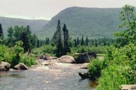 Photo: Wassataquoik Stream (1996)