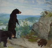 Bear exhibit, State House in Augusta