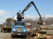 Unloading Logs From Truck to Sawmill