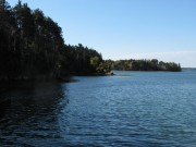 West Side of CSC's property. Orrs Island in Harpswell Sound (2010)