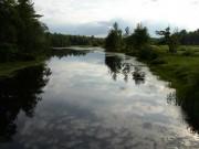 Marsh Stream (2003)
