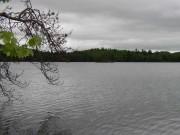 Bryant Pond (2003)