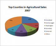 Top Counties in Agricultural Sales 2007