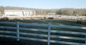 Horses in Small Fields Near a Barn (2003)