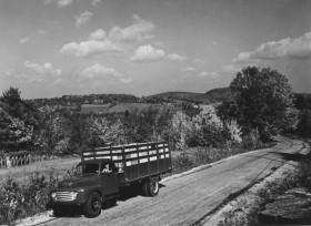 Scenic Rural View in Limerick (c. 1950)