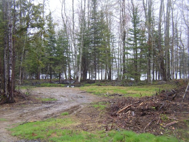 One of Several Lots Cleared Along the Penobscot River (2005)