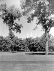 Bowdoin Campus and Chapel (1937)