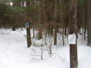 Trail at Mast Landing Sanctuary in Freeport (2005)