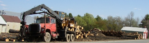 Logging Equipment at a Sawmill in Belgrade (2003)