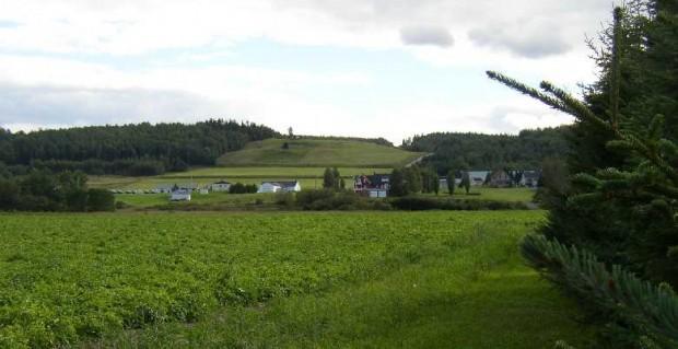 Farmland in Madawaska (2003)
