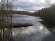 Smith Mill Pond (2005)