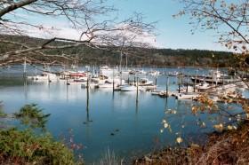 Northeast Harbor (2001)
