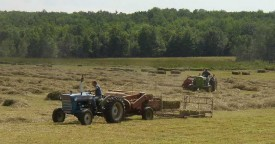 Harvestng Hay in Vassalboro (2003)