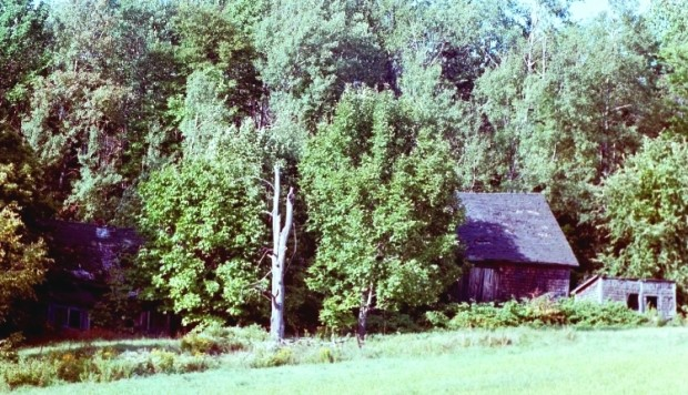 Abandoned Farmhouse, Aroostook County (2001)