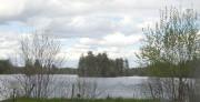 Branch Pond (2005)