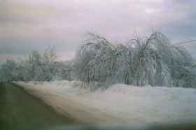 Ice Storm, 1998, in Sherman