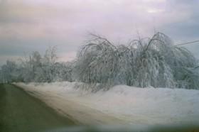 Ice Storm, 1998, in Sherman
