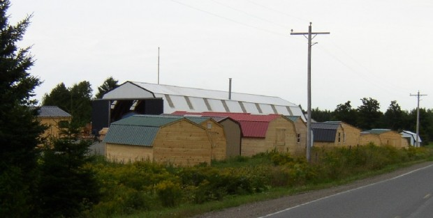 Sturdi-Built Sheds on the County Road in Smyrna (2003)