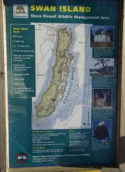 Swan Island Information Poster (2008)