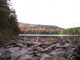 Mountain View Pond