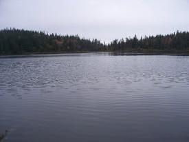 Swift River Pond