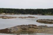 In The Basin (2006)