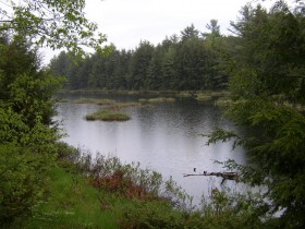 Muddy Pond on Route 105 (2003)
