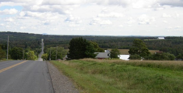 Long view in Woodland on the Colby Siding Road (2003)